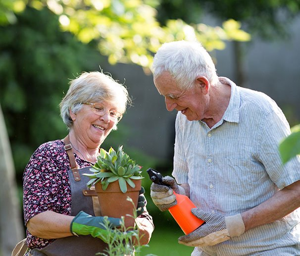 retired couple looking after plants